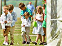 Kleine Hochzeitsgäste am Zicksee
